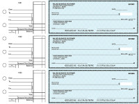 Teal Safety Standard Business Checks | BU3-ESF01-STA