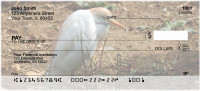Cattle Egrets Personal Checks | GCS-16