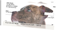 Pit Bull Friends Side Tear Personal Checks | STGCA-86