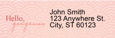 Hello, Gorgeous Narrow Address Labels | LRRLOV-21