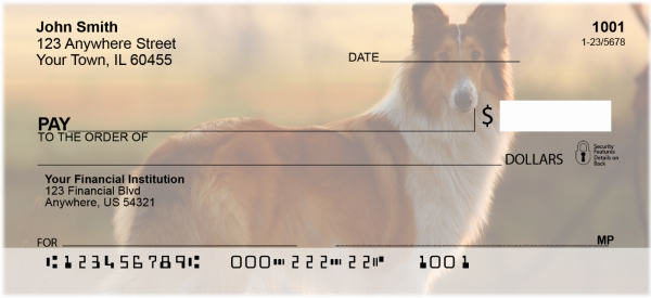 Collies Out and About Personal Checks | DOG-76