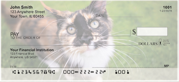 Calico Cats Personal Checks | GCA-51
