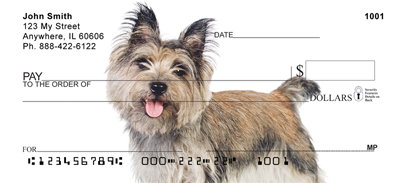 Cairn Terriers At Play Checks