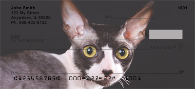 Cornish Rex Checks