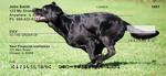 Black Lab Personal Checks
