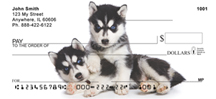 Siberian Husky Checks - Huskies Pups Checks