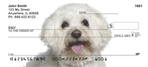 Bichon Frise Checks - Bichon Frise Personal Checks