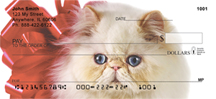 Persian Cats Personal Checks - Cat Checks