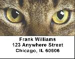 Abyssinian Cats Address Labels - Cat Labels