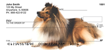 Shetland Sheepdog Personal Checks - Sheepdog Checks