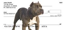 Pit Bull Personal Checks - Pit Bulls Checks
