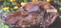 Chesapeake Bay Retriever Checks - Retrievers Personal Checks