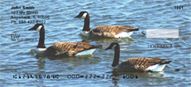 Canada Geese Checks - Canadian Geese Personal Checks