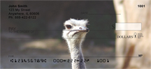 Ostrich Checks - Ostriches Personal Checks