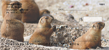 Prairie Dog Checks - Prairie Dogs Personal Checks