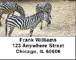 Zebra Labels - Zebras Address Labels