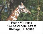 Giraffe Labels - Giraffes Address Labels