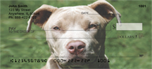 Pit Bull Checks - Pit Bull Friends Personal Checks