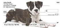 American Staffordshire Terrier Personal Checks - Staffordshire Checks