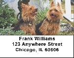 Australian Terrier Address Labels