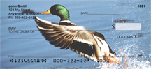 Duck Checks - Mallard Ducks Personal Checks