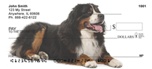 Bernese Checks - Bernese Mountain Dog Personal Checks