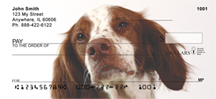 Brittany Spaniel Checks