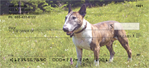 Bull Terrier Checks - Bull Terrier Personal Checks