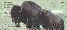 Bison Checks - Buffalo Personal Checks