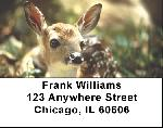 Deer Labels - Deer Fawn Address Labels
