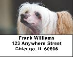 Chinese Crested Labels - Chinese Crested Address Labels