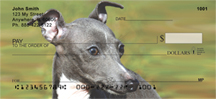 Italian Greyhound Checks - Italian Greyhounds Personal Checks