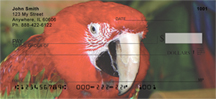 Parrot Checks - Macaws Up Close Personal Checks